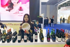 CWSA at Chengdu Tang Jiu Fair 2019 (11)