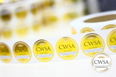 cwsa-gold-medals-2013-6-low-res