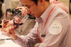 CWSA-BV-201380