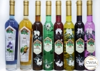 Samples-arrived-for-China-Wine-and-Spirits-Awards-166