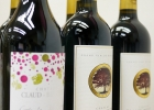 Samples-arrived-for-China-Wine-and-Spirits-Awards-261